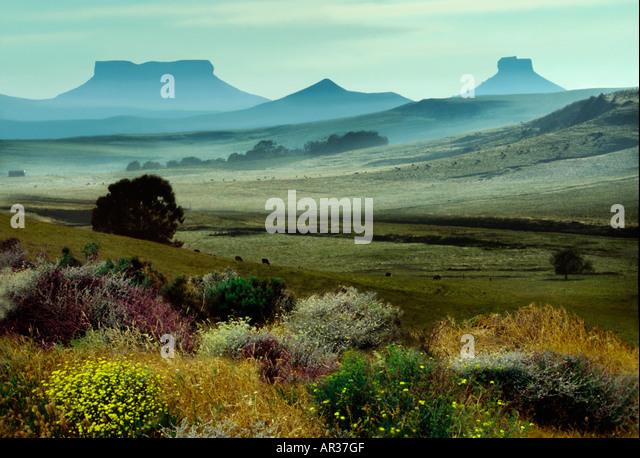 Table mountains in Kwazulu Natal, Kwazulu Natal, Southafrica Africa, South Africa, Africa - Stock Image