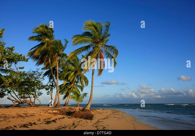 Las Terrenas beach, Samana peninsula, Dominican Republic - Stock Image
