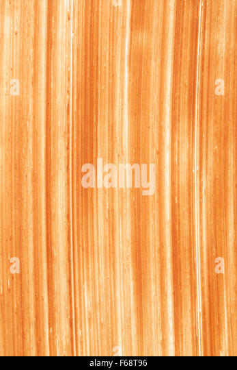 close up of chocolate spread daub backgrounds - Stock Image