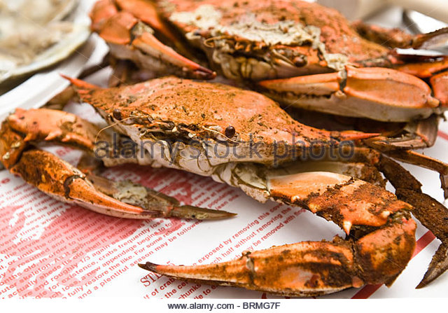 Maryland, Chesapeake Bay, St. Michaels,  Cooked Crabs. - Stock-Bilder