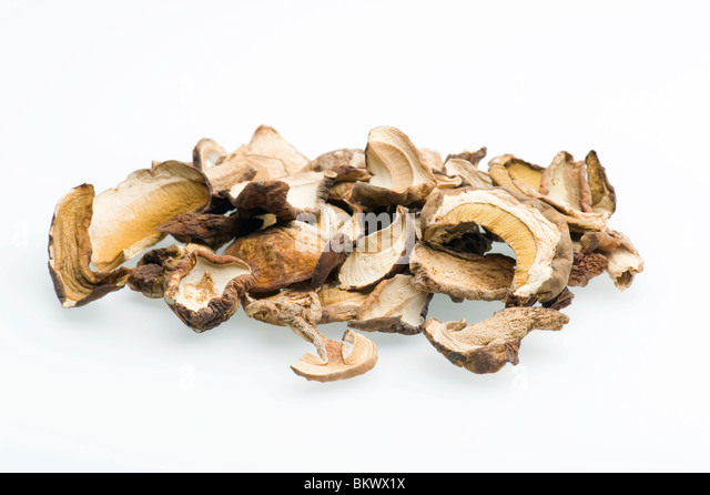 Close-up Of Dried Porcini Mushrooms Against White Background - Stock Image