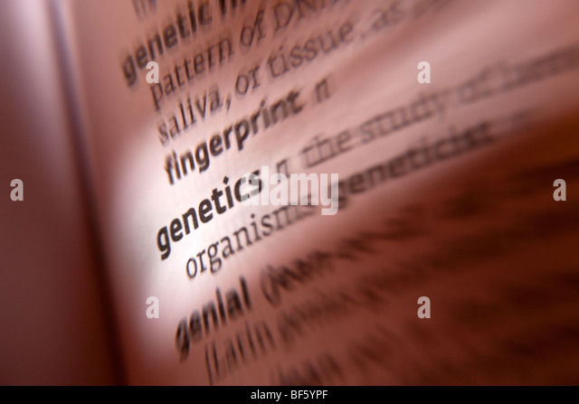 Genetics - Stock Image