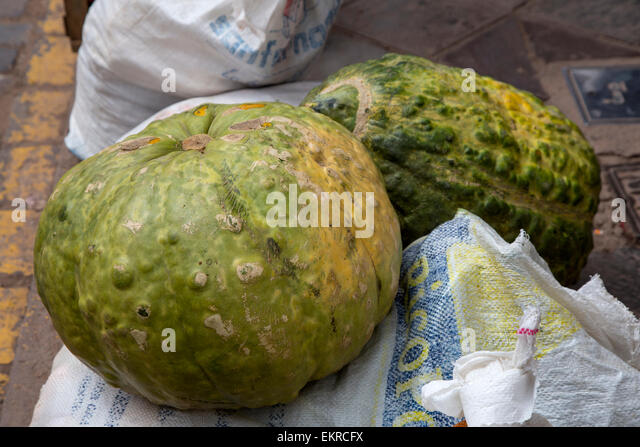 Peru, Cusco.  Zapallo, a Peruvian Squash or Pumpkin of the Andean Region. - Stock Image
