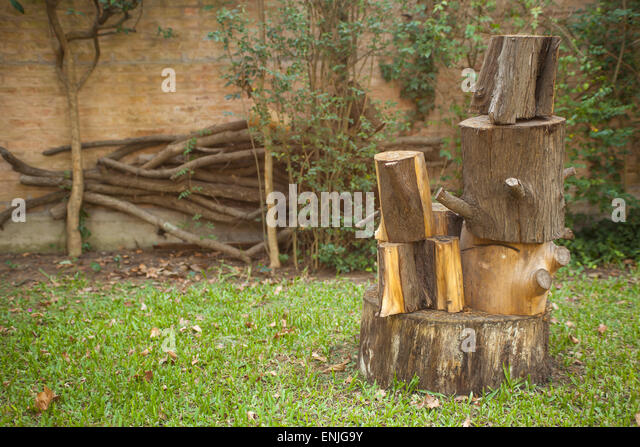 Chopped wood stump stock photos chopped wood stump stock for Stump furniture making
