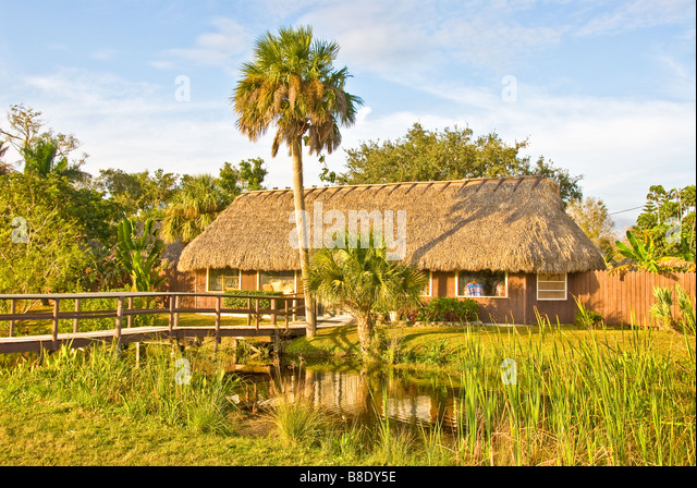 Florida Everglades Tamiami Trail US 41 Seminole Miccosukee Indian village thatch building palm tree and sawgrass - Stock Image