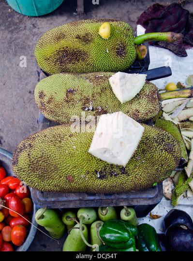 pumpkin fruit or vegetable jack fruit