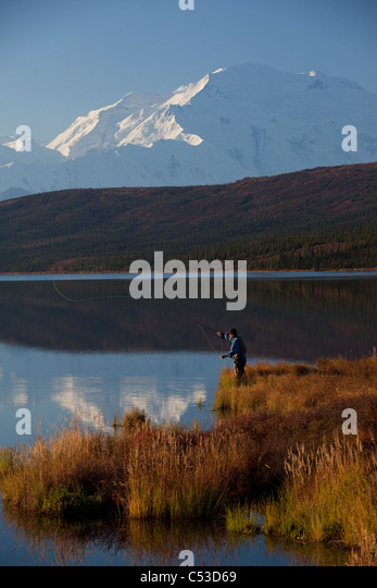Fly fisherman casting over Wonder lake with Mt. McKinley in the background, Denali National Park and Preserve, Alaska - Stock Image