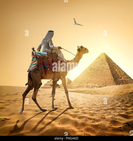 Bedouin and bird near pyramids in desert - Stock Image