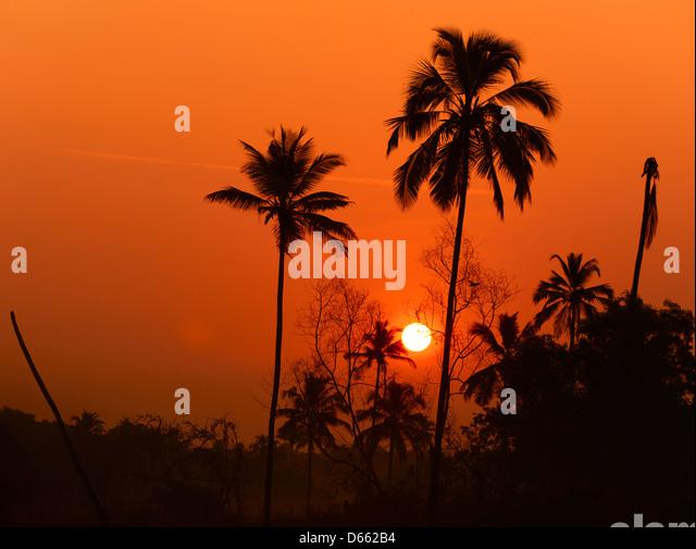 Sunrise in the village of Tamborim in South Goa, India - Stock-Bilder