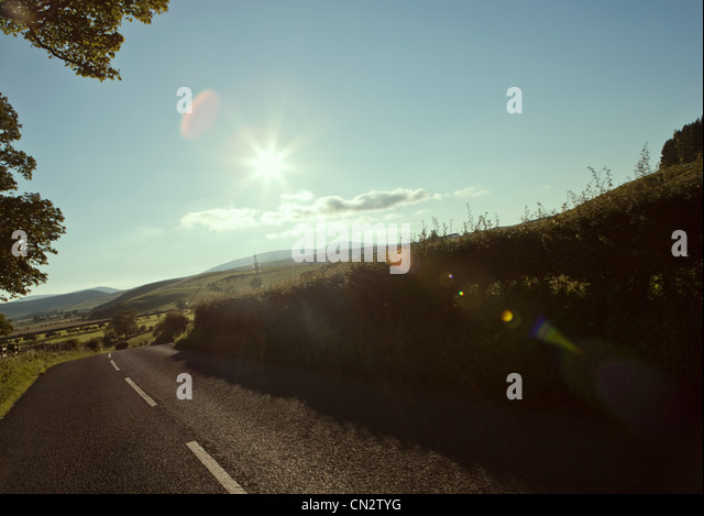 Country road in summer - Stock Image