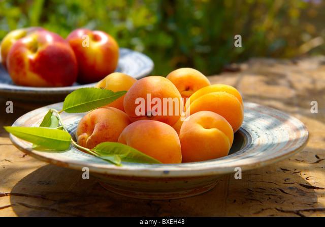 Whole fresh apricots - Stock Image