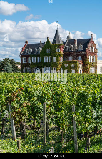 vineyards in Medoc, Bordeaux, Gironde, Aquitaine, France, Europe, Chateau Lascombes, vineyard in Medoc, Margeaux, - Stock Image