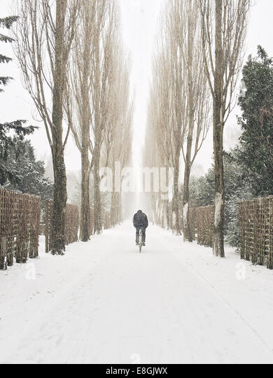 Man cycling along road in snow, Copenhagen, Denmark - Stock Image