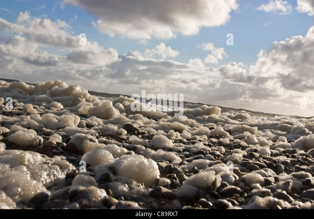 Denmark, Vrist, View of natural foam on seaside - Stock Image