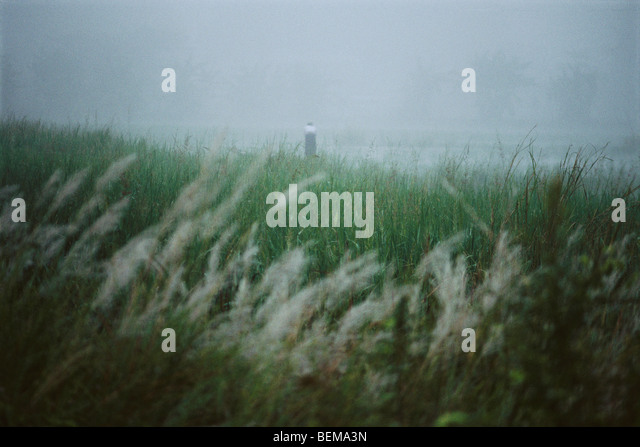 Myanmar (Burma), misty landscape with person in the distance - Stock-Bilder