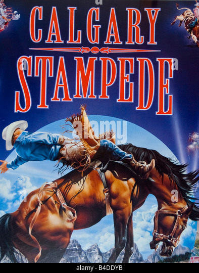Calagary Stampede rodeo poster showing action and cowboy on bucking bronco horse, popular canadian annual event - Stock Image