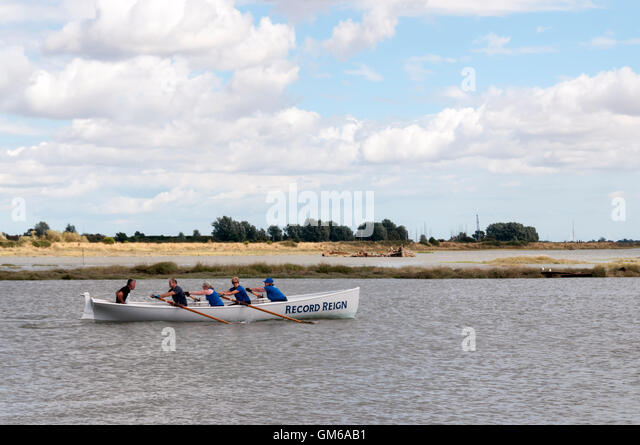 Crew of the racing gig Record Reign training on the Blackwater Estuary at Maldon, Essex. - Stock Image