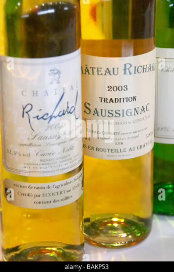chateau richard bergerac france - Stock Image