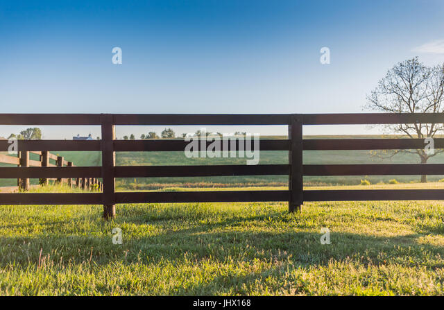 Horse Fence Across Field on Bright Summer Morning - Stock Image