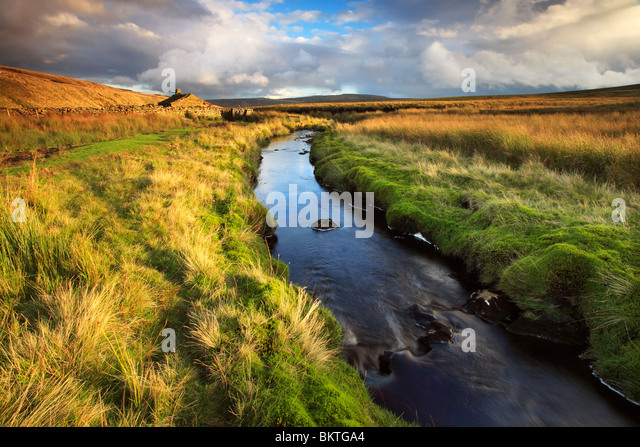 Autumn color surrounds this little stream in Birk Dale in the Yorkshire Dales of England - Stock Image