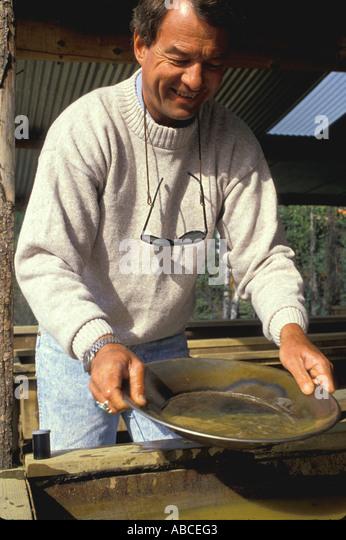Alaska man gold panning - Stock Image
