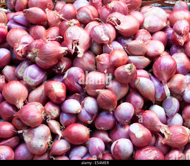Plant shallots cook spicy foods abstract background. - Stock Image