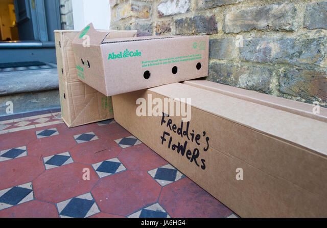 Boxes of vegetables and flowers home delivery awaiting pick up outside a South West London house - Stock Image