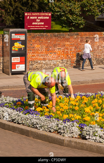 Biffa waste management services gardening and weeding in Norwich , Norfolk , England , Britain , Uk - Stock Image