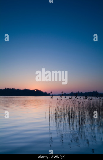 Landscape over reeds and lower lough erne lake county fermanagh northern ireland - Stock Image