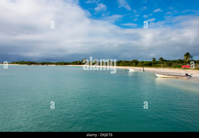 White sand in the Gravenor bay in Barbuda, Antigua and Barbuda, West Indies, Caribbean, Central America - Stock Image