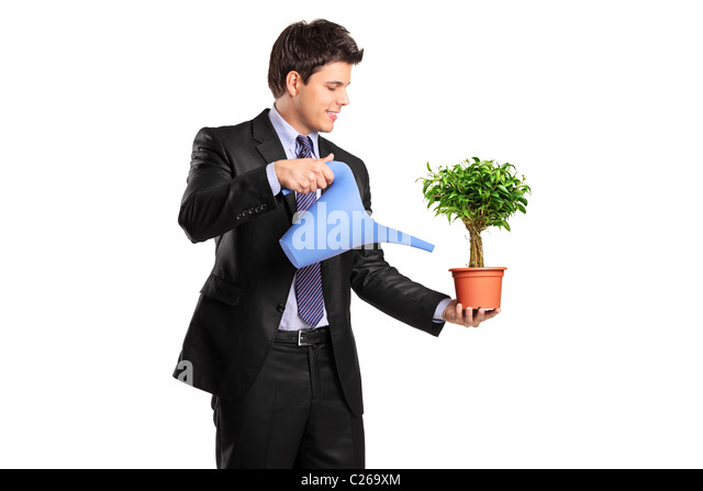 Portrait of a businessman holding a flower pot with benjamin and watering can - Stock Image