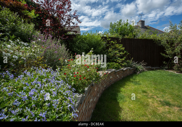 English town garden in summer - Stock Image