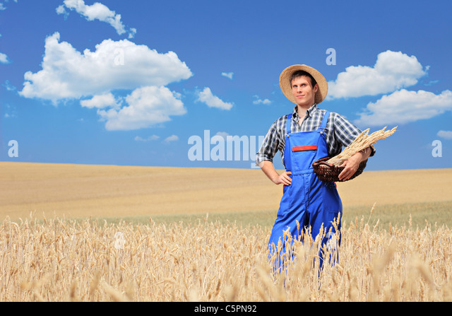 A farmer with panama hat posing in a field - Stock Image