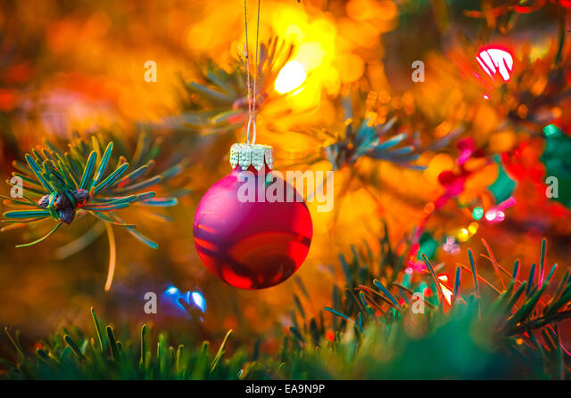 Decorated Christmas tree - Stock Image