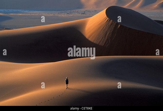 Tread Boldly on Sand Dunes, Namib Desert, Namibia, Africa - Stock-Bilder