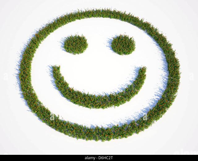Grass smiley face, artwork - Stock Image