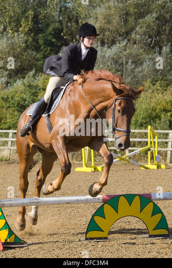 A horse and rider jumping a fence during a show jumping competition held outside - Stock Image