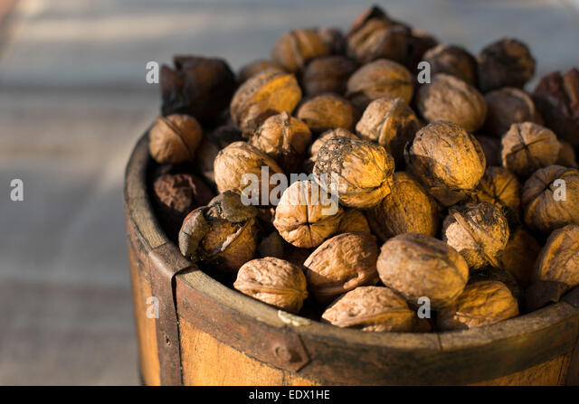 close up of vintage bucket filled with freshly harvested Spanish walnuts against a moody dark background - Stock Image