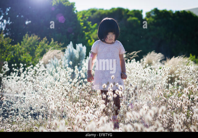 Small girl wearing white dress walking in field with high blossoming grass, trees in background - Stock Image