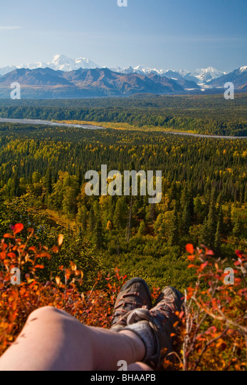 Autumn landscape shows hikers legs and Mt. Mckinley and Alaska range along Little Coal Creek trail, Southcentral, - Stock Image