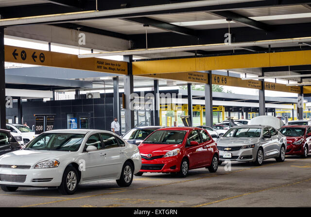Avis Car Rental At San Francisco International Airport