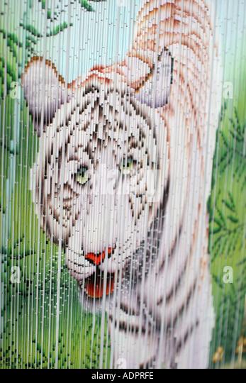 Florida, bamboo curtain, decoration, white tiger painting, - Stock Image