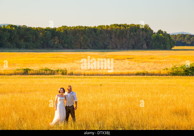 Wedding couple shares a romantic moment in a field or meadow at sunset on their wedding day. - Stock-Bilder