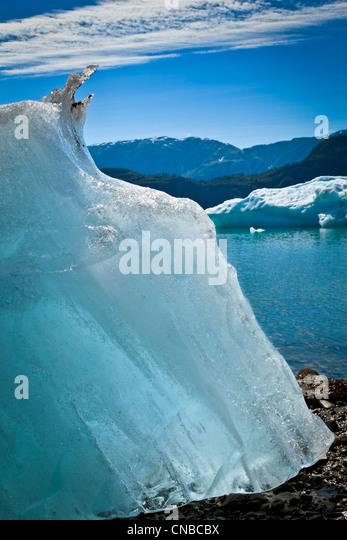 Icebergs from McBride Glacier stranded on shore at low tide, Muir Inlet, Glacier Bay National Park & Preserve, - Stock Image