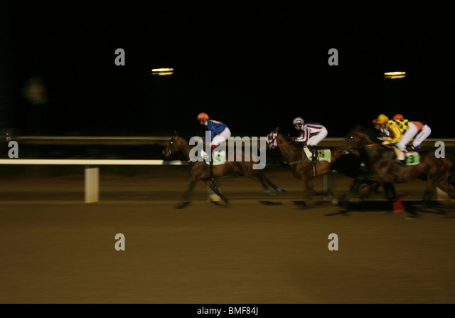 Racing to the finish. Night time horse racing at the Mijas Racetrack, Malaga, Costa del Sol, Andalucia, Spain. - Stock Image