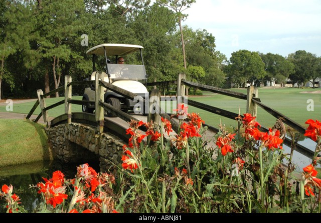 Tarpon Springs Florida Westin Innisbrook Resort Copperhead Golf Course fl golfer in cart going over bridge - Stock Image