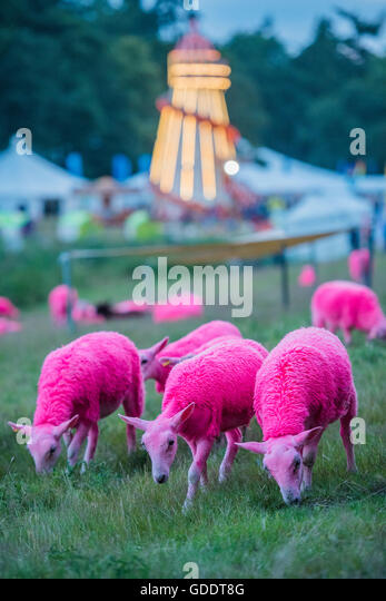 Henham Park, Suffolk, UK. 14th July, 2016. Dusk over the trademark painted sheep and helter skelter - The 2016 Latitude - Stock Image