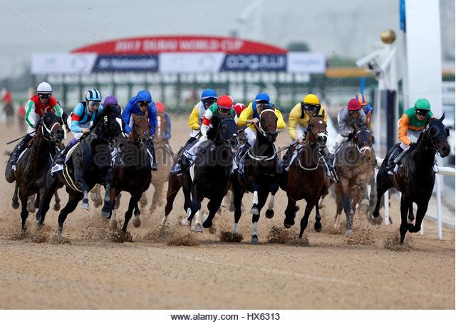 Horse Racing - Dubai World Cup - Meydan Racecourse, Dubai - 25/3/17 - Christophe Soumillon rides Thunder Snow to - Stock-Bilder