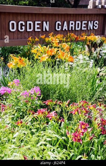 Indiana Valparaiso Ogden Gardens botanical flower garden day lillies flora sign horticulture bloom native plants - Stock Image