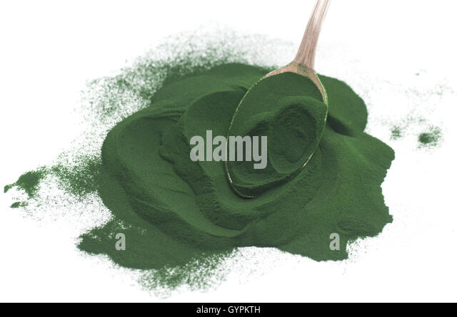 Chlorella Algae Stock Photos Amp Chlorella Algae Stock